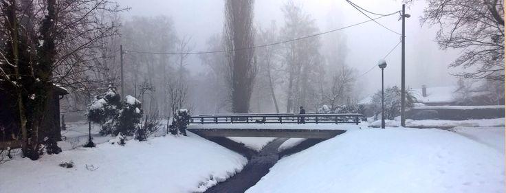 Zagreb pod snijegom uvijek izgleda prekrasno, no mi smo jučer odlučili prošetati do Narnije. Dok pada kiša, a snijeg se topi, još fotografija iz Narnije snimljenih jučer mojom Lumiom 930 pogledajte...