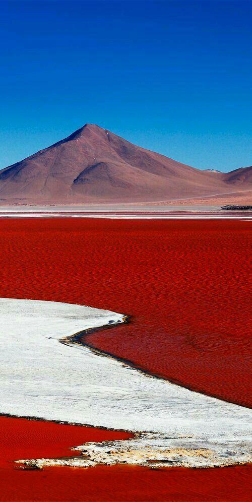 Laguna Colorado salt lake, Bolivia El dolor de nuestra tierra, el lado bonito del sufrimiento¡¡