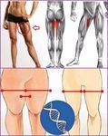 Мобильный LiveInternet Упражнения для укрепления мышц бедер и ног. | limada - Дневник limada |