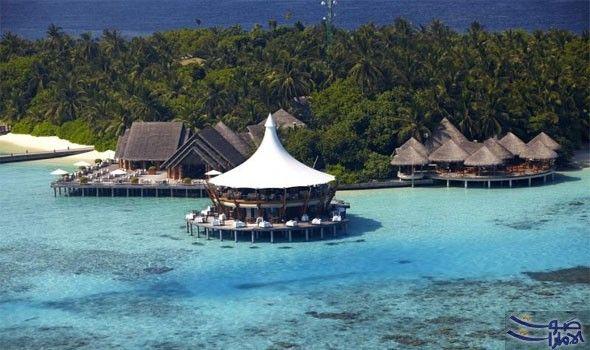 منتجع باروس المالديف الفاخر يصدر فرصة مميزة للمسافرين يقدم منتجع باروس المالديف فرصة ممي زة للمسافرين من دول مجلس التعا Maldives Resort Travel Nature Tree