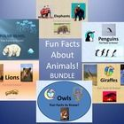 Fun Facts About Owls, Penguins, Polar Bears, Elephants, & Giraffes - BUNDLE. Includes 6 Different Owls, Lions, Penguins, Polar Bears, Elephants...