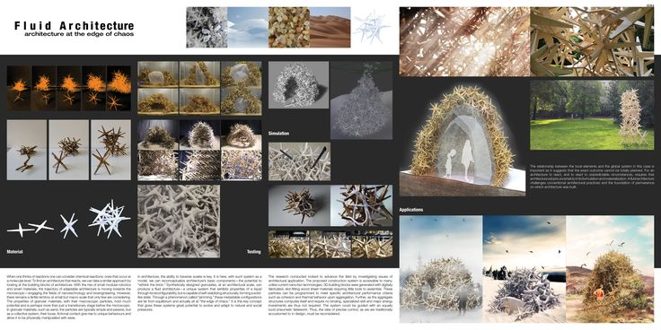 1st prize: Fluid Architecture  Author: Calvin Fung. Research with Victor Huynh. (Canada)  Reg. no. 0084