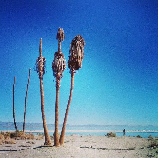 33 best Salton Sea images on Pinterest Abandoned places Derelict