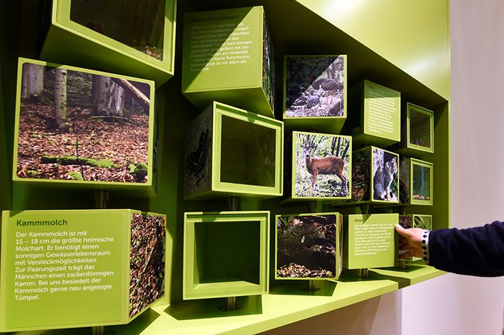 Interaktives Exponat / Hands-On Dreh-Puzzle im Steigerwald-Zentrum. Konzipiert und realisiert von Impuls-Design.