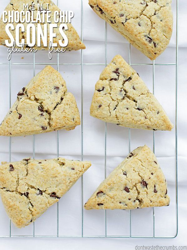Seriously the best recipe on the planet for chocolate chip scones. These chocolate chip scones are gluten-free, slightly sweet and very addicting! // @dontwastecrumbs