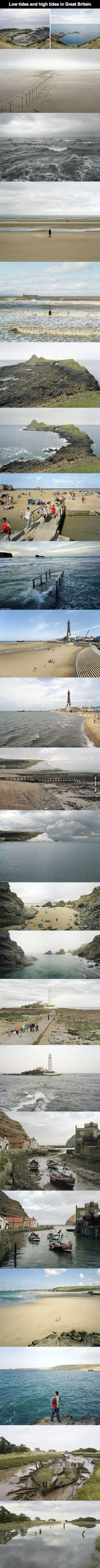 39 best tide pools images on pinterest tide pools teaching low tide vs high tide in britain nvjuhfo Gallery