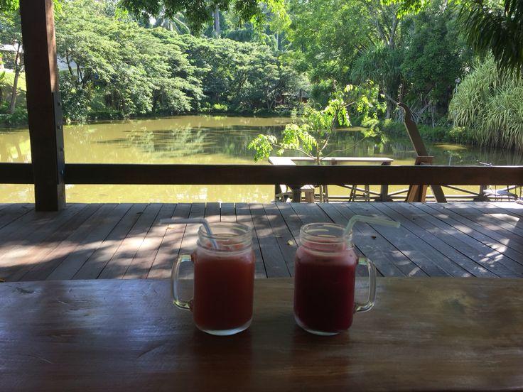 Health Drink at the lake