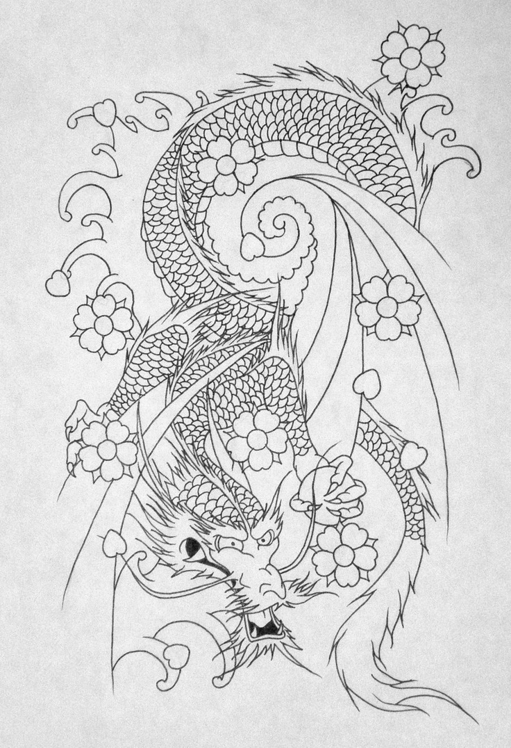 dragon tattoo outline pictures to pin on pinterest tattooskid. Black Bedroom Furniture Sets. Home Design Ideas
