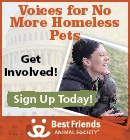 """Best Friends Animal Society...has some really good ways to help make sure there are """"No More Homeless Pets"""""""