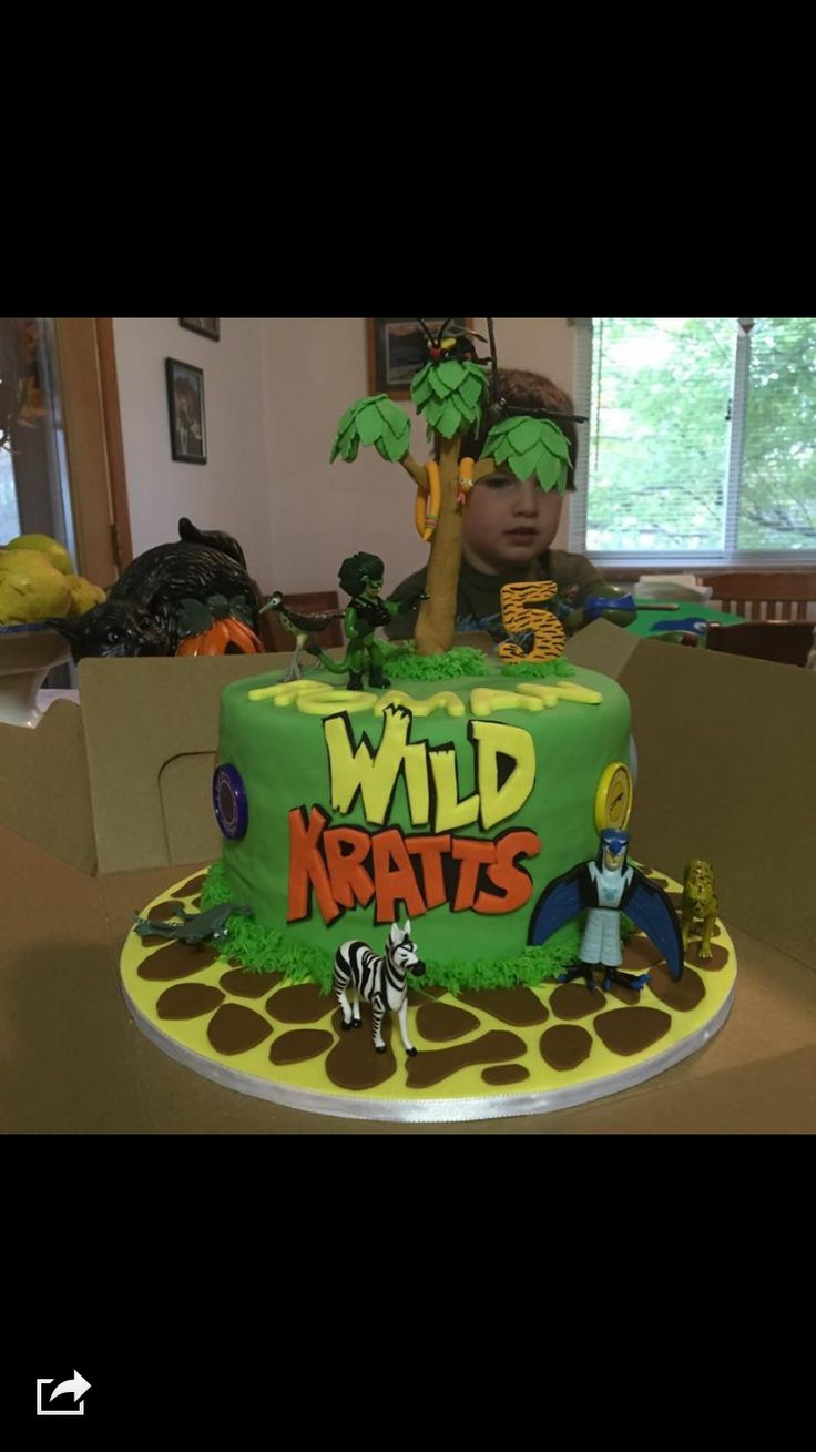 The wild kratts birthday cake