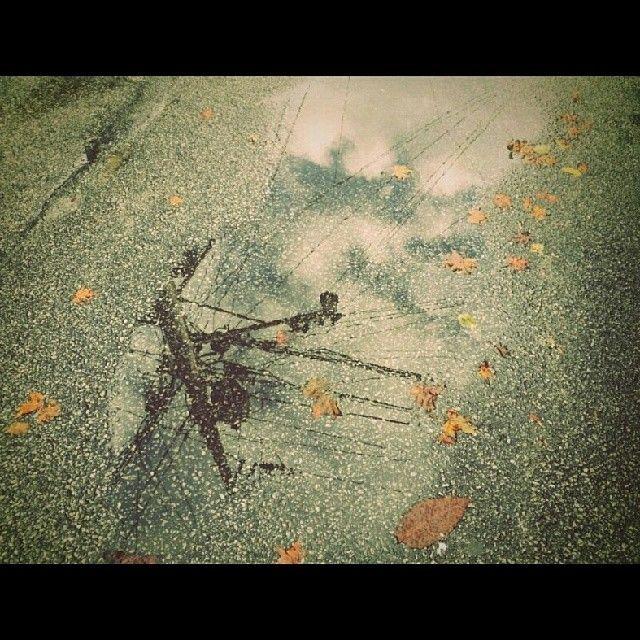 .@ymklc5252   #131124 #물웅덩이 속 #하늘 모습 #낙엽 이 #둥둥   Webstagram
