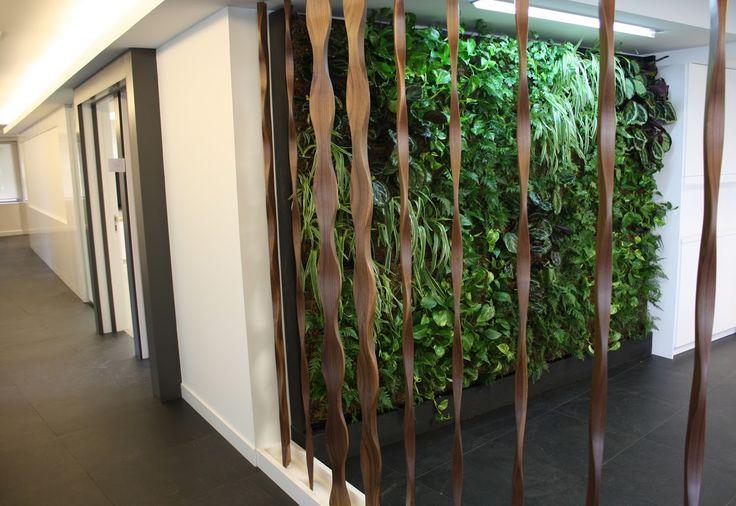 112 best images about jardines verticales on pinterest for Jardin vertical madrid