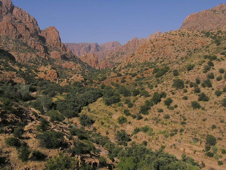Paysages de rêve - Atlas marocain  Blog de voyage www.trace-ta-route.com http://www.trace-ta-route.com/maroc-randonnee-a-cheval/  #maroc #morocco #atlas