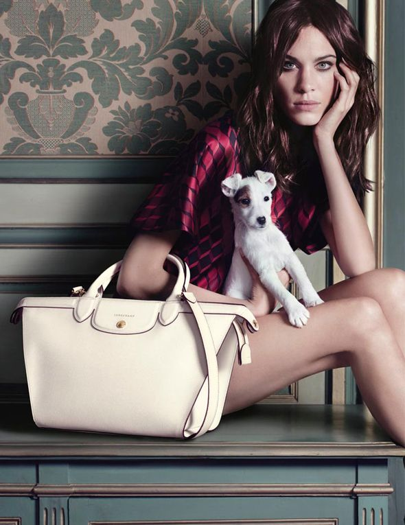 Alexa Chung with an adorable Jack Russel Terrier for Longchamp FW 2014 2015 l Photo Max Vadukul l #fashion #bags #pug