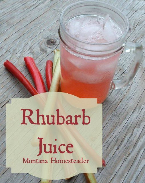 Nothing like a good book and a cold glass of lemonade or a Rhubarb juice recipe an easy and delicious way to use rhubarb | Montana Homesteader