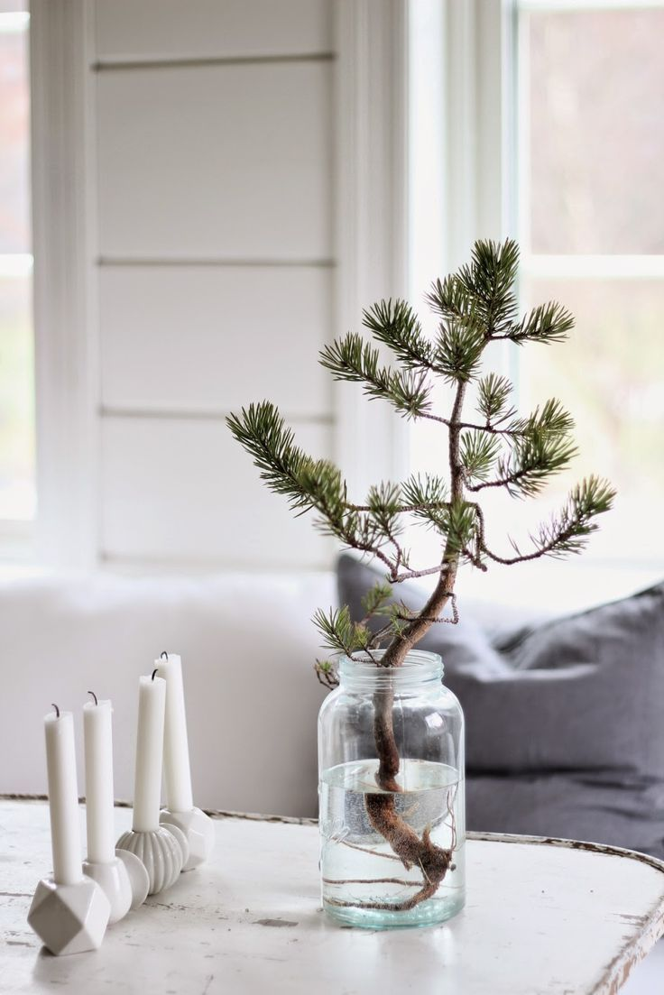 simple christmas mood - little pine tree and candles
