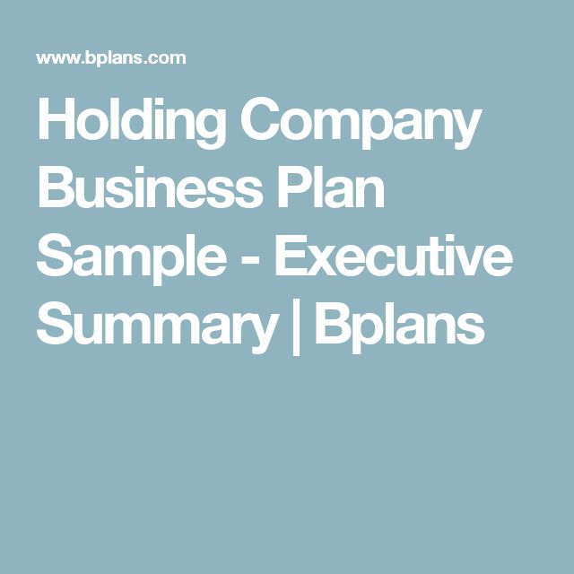 Holding Company Business Plan Sample - Executive Summary | Bplans