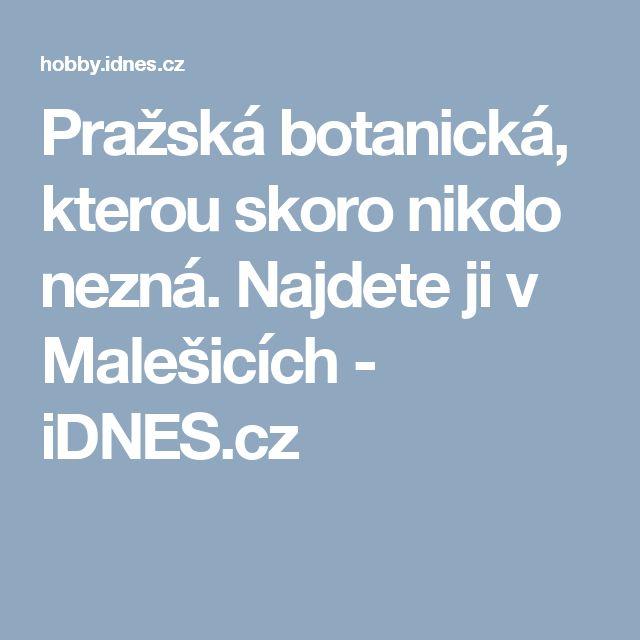 Pražská botanická, kterou skoro nikdo nezná. Najdete ji v Malešicích - iDNES.cz