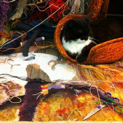 Annika Ekdahl » Gallery One of my favorite tapestry weavers :) #tapestry