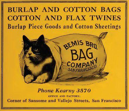 https://i.pinimg.com/736x/7c/44/fd/7c44fd701368bc4e793d688672bd35fb--cat-posters-cat-love.jpg