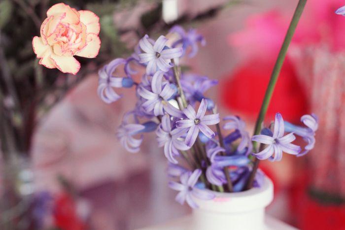 sauvage flower