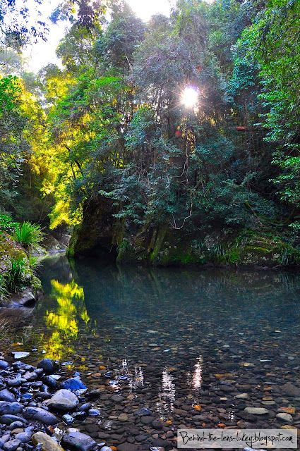 Crystal Clear Waters - Barrington Tops Australia  I could sit here for days and be completely happy(: