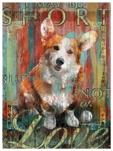 I may be short, but not on love. I want this picture in my house, but with my little corgi on it. :)