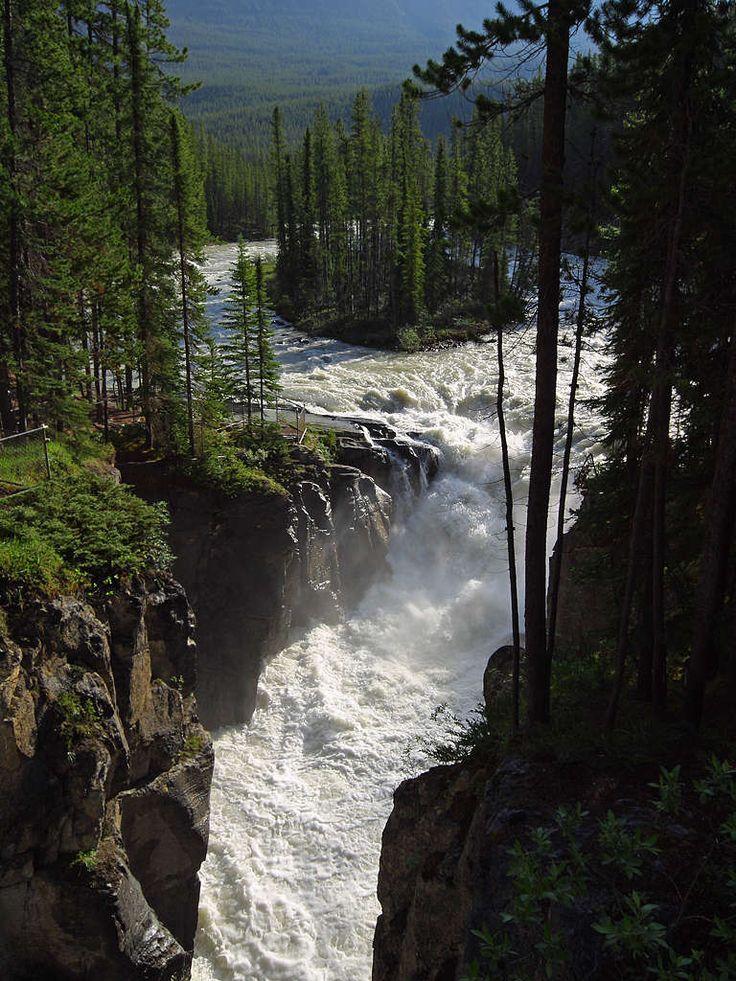 Sunwapta Falls Jasper - Canada
