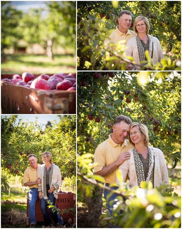 Couple in their apple orchard during harvest