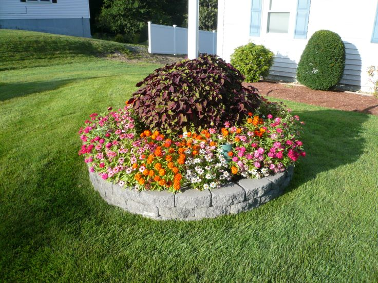 Diy Curb Appeal On A Budget Front Yards Flower Beds