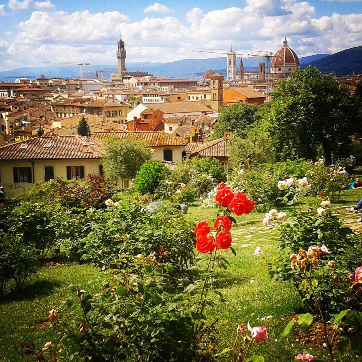 Giardino delle rose. Con circa 1000 varietà botaniche, il giardino è anche un punto panoramico dal quale contemplare i più suggestivi monumenti della città di Firenze.