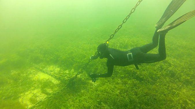 Las cadenas de los barcos de recreo arrancan la vegetación del suelo marino