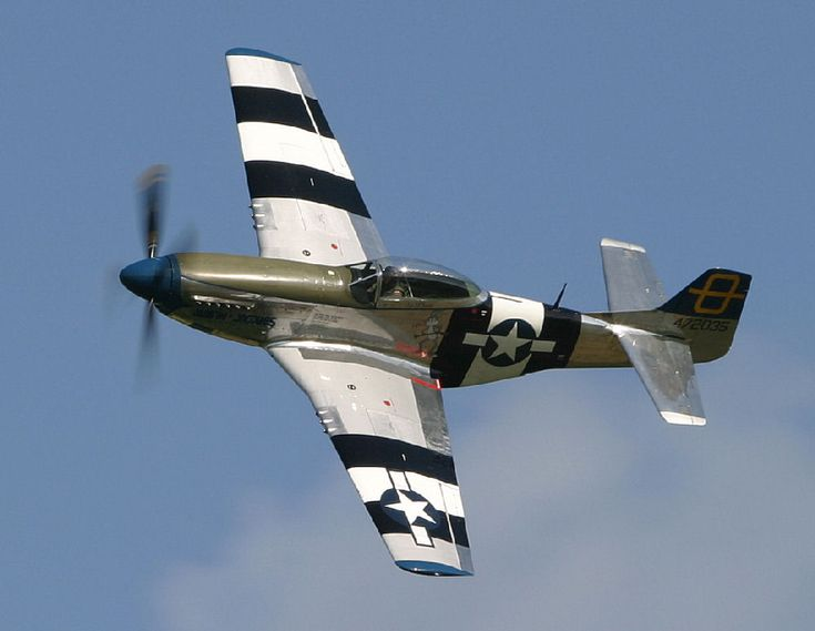 P-51 Mustang, a must have for all of your flying adventures!