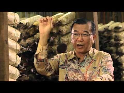 A ganodermáról és a spirulináról beszél Dr. Lim, a DXN alapítója