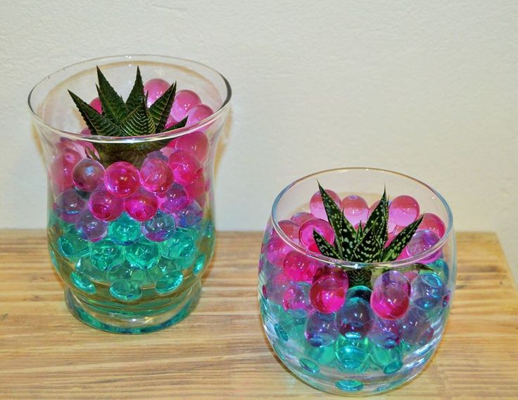 succulent Jelly