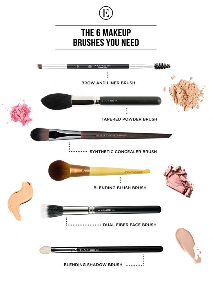 The 6 Makeup Brushes You Need #theeverygirl