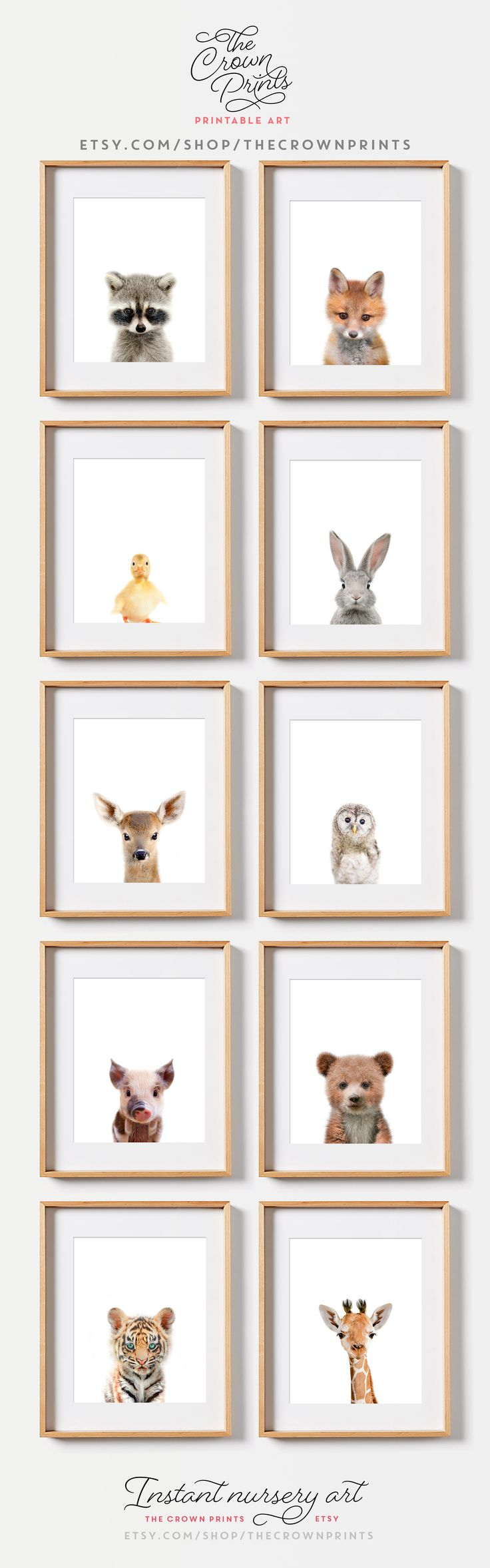 Woodland Animals, Safari Animals Nursery art from The Crown Prints on Etsy. Available as digital downloads OR have it printed and shipped to your home.