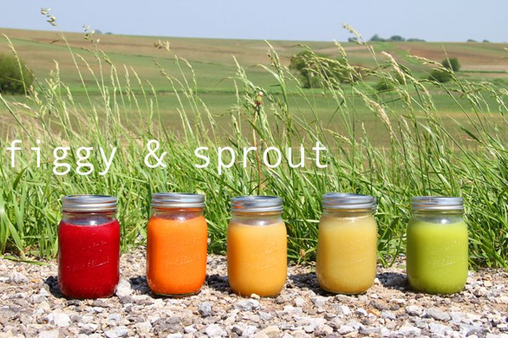 3 Day Juice Cleanse by FIGGY & SPROUT. My most favorite juicing detox program I've found online. Recipes are easy and delicious. And she's got a fantastic blog entry about her process without all the medical mumble jargon! TRY IT!!!