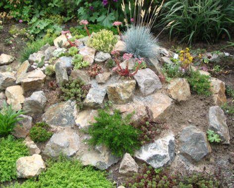 die besten 25+ steingarten anlegen ideen auf pinterest, Garten und bauen