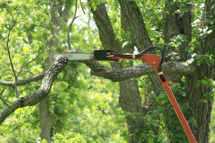 Limbsaw will reach 18-20 feet