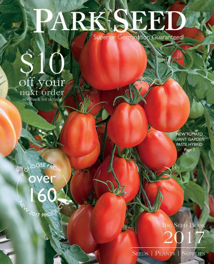 Request Hundreds of Free Catalogs Sent to Your Home: Free Catalogs for Your Garden