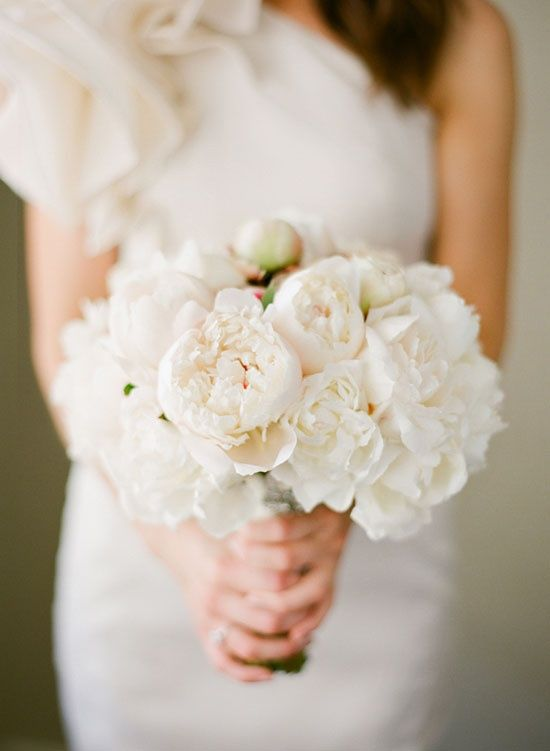 an all-white peony bouquet. And the girls could carry all white tulip bouquets