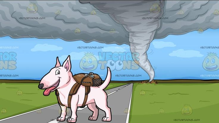 A Tiny Dog With A Backpack With A Tornado Background:   A cute pink dog with standing ears looking happy and cheerful while exposing its pink tongue a pink bag strapped on its back and A view of a tornado from afar destroying the green fields beyond the road from a distance