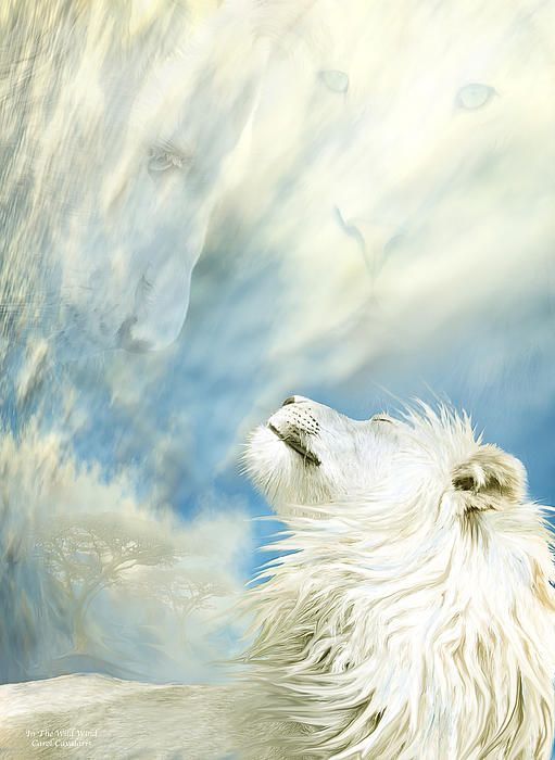 White Lion Divine African King Your infinite spirit fills the sky And lives in the wild wind.