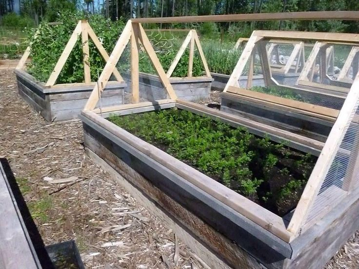 Raised beds with covers