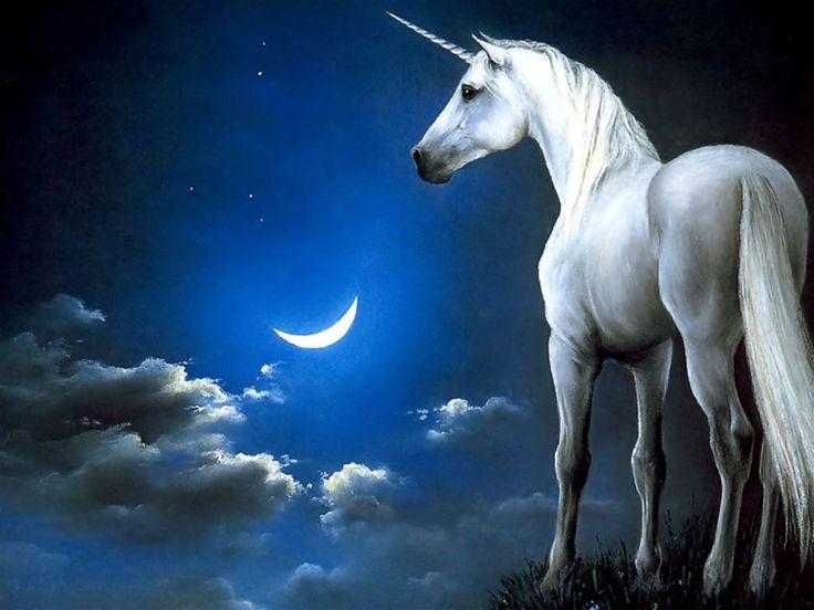 fotos de una luna | Fondo de pantallas de Luna y Unicornio de Unicornios gratis para ...