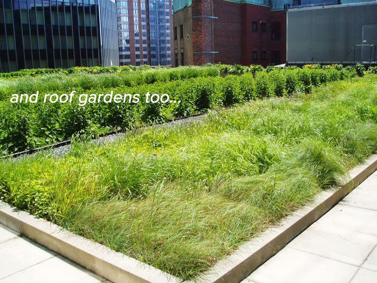 1000+ Ideas About Extensive Dachbegrünung On Pinterest Intensive Extensive Dachbegrunung Nachhaltig