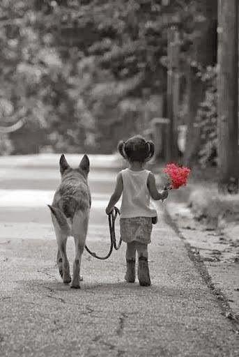 O que revela a nossa força não é sermos imbatíveis, incansáveis, invulneráveis. É a coragem de avançar, ainda que com medo. É a vontade de viver, mesmo que já tenhamos morrido um pouco ou muito, aqui e ali, pelo caminho. É a intenção de não desistirmos de nós mesmos, por maior que às vezes seja a tentação. São os gestos de gentileza e ternura que somente os fortes conseguem ter!!!... (ana jácomo)