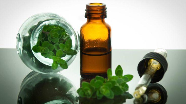 Here is How Oregano Oil Benefits Your Health http://www.corespirit.com/oregano-oil-benefits-health/ &HCATS%