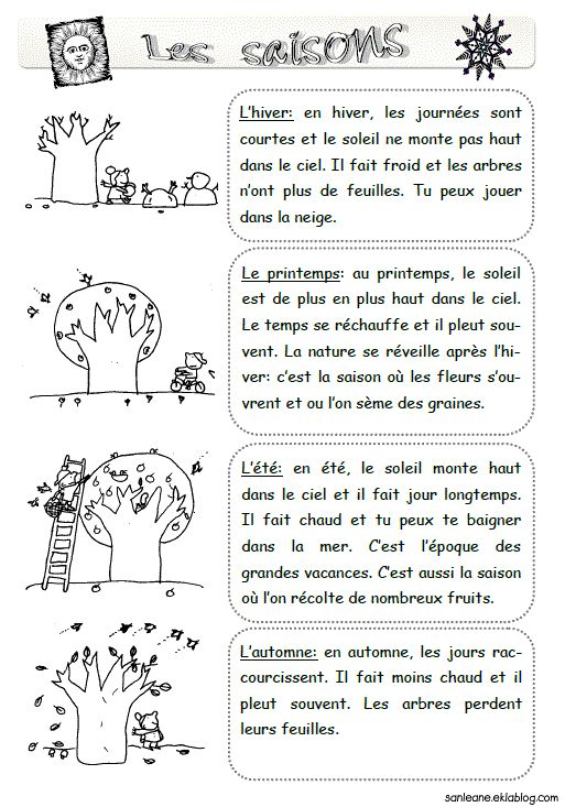 Les saisons - reading comprehension